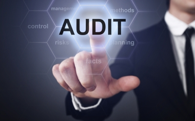 Information Systems Audit of an Insurance Company in Bhutan