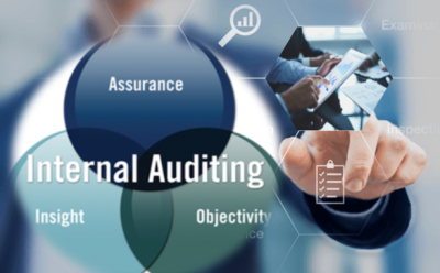 Internal Audit Manual for a Financial Services Company